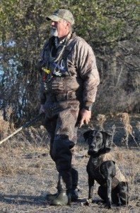 British Labrador Retriever Breeder in Minnesota